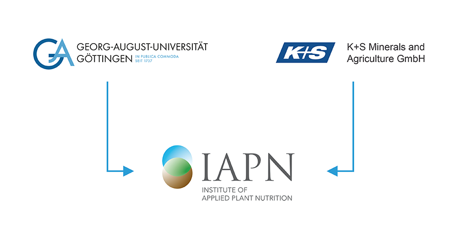 Organizational structure of the IAPN
