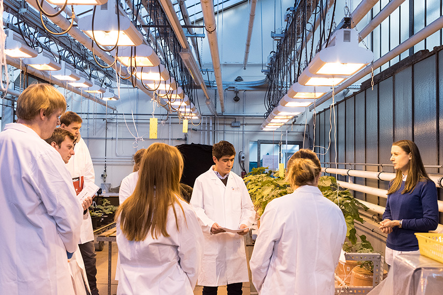 As part of the Bachelor module, Junior Professor Dr. Merle Tränkner (right) explains to students how measurements on plants are done. The focus is on photosynthetic leaf gas exchange and water-use efficiency. (Photo: IAPN)