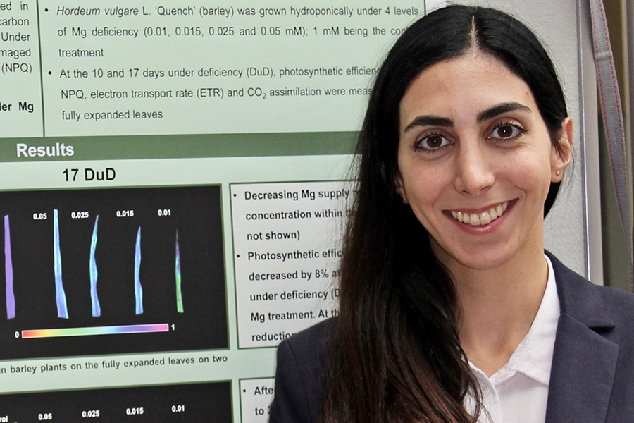 Exploring the impact of Mg deficiency on the photosystem functionality and photosynthetic efficiency: IAPN PhD student Setareh Jamali Jaghdani. (Photo: Tränkner)