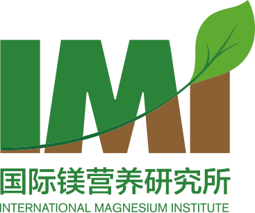 Report about the Symposium on the Website of the International Magnesium Institute